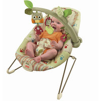 Fisher-Price - Cozy Cocoon Bouncer