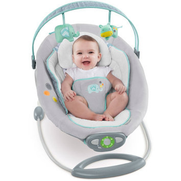 Comfort & Harmony Ingenuity The Gentle Automatic Bouncer - Avondale