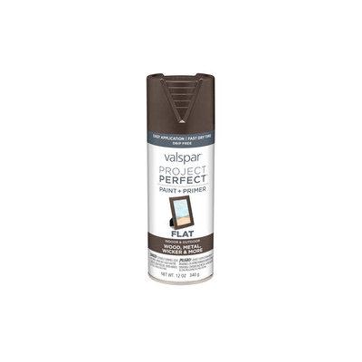 Valspar Project Perfect Labrador Brown Indoor/Outdoor Spray Paint 407.0084206.076
