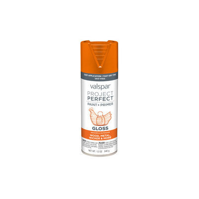 Valspar Project Perfect Island Orange Indoor/Outdoor Spray Paint 407.0084228.076