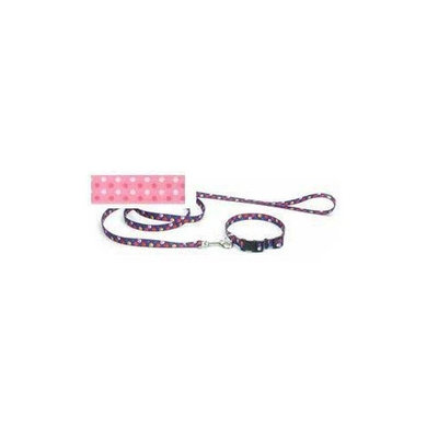 Coastal Pet Pet Attire Styles Polka Dot Pink 4 Foot Dog Leash with a Width of 5/8 in.