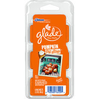 Glade 6-Pack 2.3-oz Pumpkin Electric Air Freshener Refills 669318
