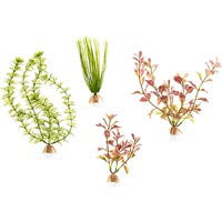 Tetra Small Aquarium Plants, Pack of 4 plants