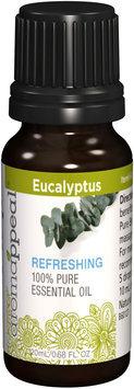 Miaroma Eucalyptus Essential Oil