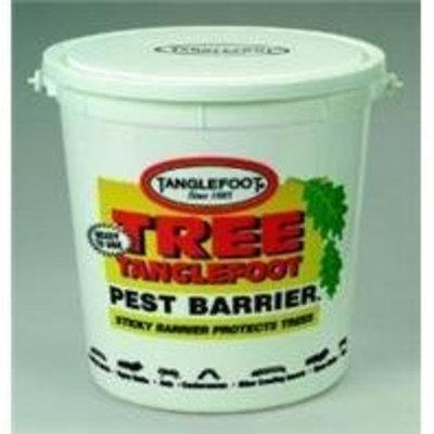 Tree Tanglefoot 5 Lb