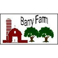 Barry Farm Yellow Corn Grits, 1 lb.