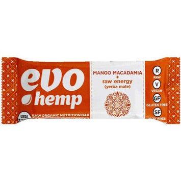 Evo Hemp Mango Macadamia + Raw Energy Raw Organic Nutrition Bar, 1.69 oz, 12 count