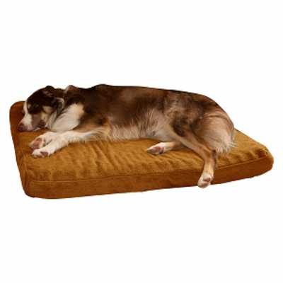PAW Orthopedic Super Foam Pet Bed, Large, Camel, 1 ea