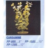Hagen Marina Aquascaper Cardamine Large Plant, 12-Inch