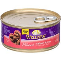 Wellness Cuts Sliced Salmon Can Cat Food 24 Pack