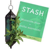 Stash Tea Moroccan Mint Green Tea