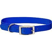 Coastal Pet Metal Buckle Nylon Personalized Dog Collar in Blue, 5/8 Width