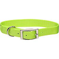 Coastal Pet Metal Buckle Nylon Personalized Dog Collar in Lime, 3/8 Width