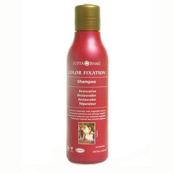 Surya Brasil Restorative Shampoo 8.45 oz