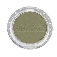 Prestige Cosmetics Prestige Dramatic Minerals Eyeshadow MEC-04 Leaf