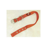 Hamilton Pet Products Double Thick Nylon Deluxe Dog Collar in Redbrick Size: 26