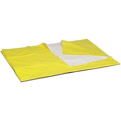 Briggs Healthcare DMI 650-1131-0000 DMI Econo-Blanket