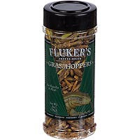 Flukers Freeze Dried Reptile Treat Grasshopper