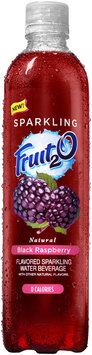 Fruit2O® Natural Black Raspberry Flavored Sparkling Water Beverage 17 fl. oz. Plastic Bottle