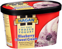 Hagan® Fat Free Frozen Yogurt Blueberry & Sweet Cream Ice Cream 1.5 qt. Tub