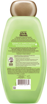 Garnier® Whole Blends™ Green Apple & Green Tea Extracts Refreshing 2-in-1 Shampoo & Conditioner 22 fl. oz. Bottle