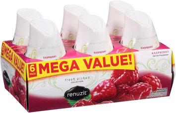 Renuzit® Fresh Picked Collection Raspberry Gel Air Freshener