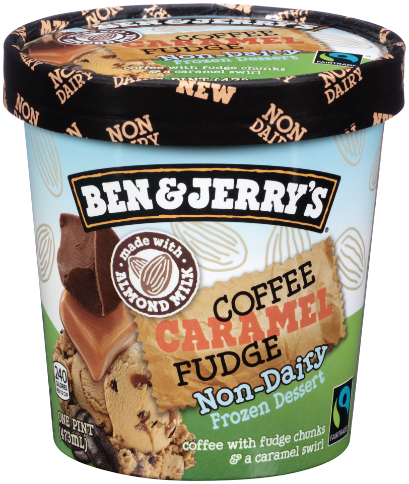 Ben & Jerry's® Coffee Caramel Fudge Non-Dairy Frozen Dessert