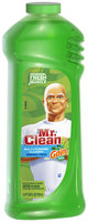 Mr Clean Liquid All Purpose Cleaner with Gain Original 24 Oz