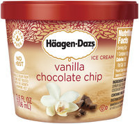 Häagen-Dazs Vanilla Chocolate Chip Ice Cream