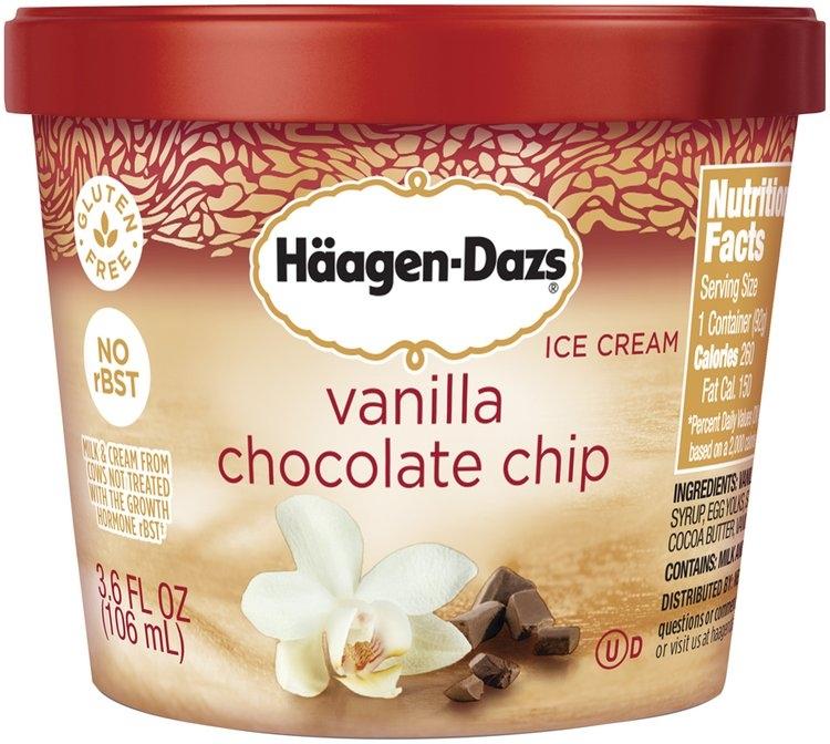 HAAGEN-DAZS Vanilla Chocolate Chip Ice Cream