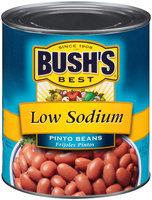 Bush's Best® Low Sodium Pinto Beans 111 oz. Can
