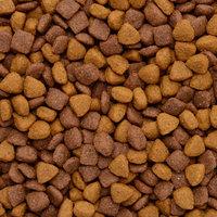 Ol'Roy® Complete Nutrition Dog Food 30 lb. Bag