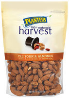 Planters California Almonds Harvest Peg
