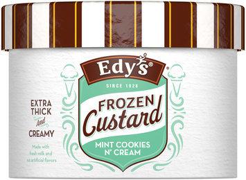 Edy's Frozen Custard Mint Cookies 'n Cream