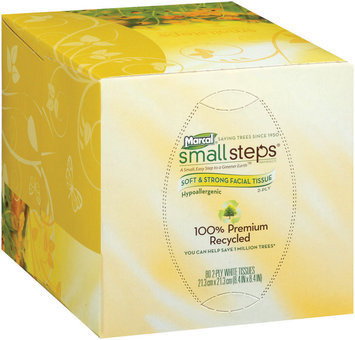 Small Steps® White Hypoallergenic 2-Ply Facial Tissues 80 Ct Box