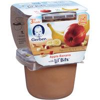 Gerber 3rd Foods Apple Banana with Lil' Bits 2-5 oz. Packs