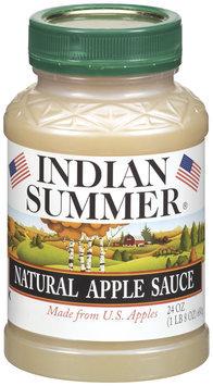 Indian Summer Natural Apple Sauce 24 Oz Plastic Jar