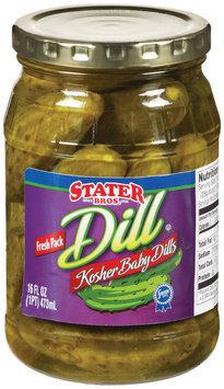 Stater Bros. Kosher Baby Dills Pickles 16 Fl Oz Jar
