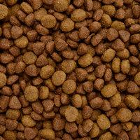 Ol'Roy® Puppy Complete Dog Food 4 lb. Bag