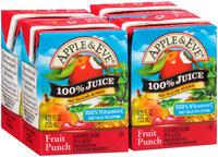 Apple & Eve® Fruit Punch 100% Juice 4-4.23 fl. oz. Pack