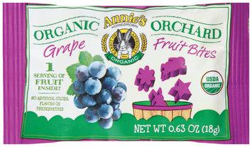 Annie's®  Homegrown Organic Orchard Grape Fruit Bites