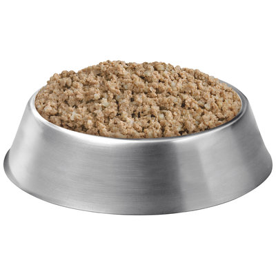Purina Pro Plan Focus Adult Sensitive Skin & Stomach Salmon & Rice Entree Classic Dog Food 13 oz. Can