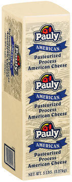 Pauly American White Cheese 5 Lb Brick