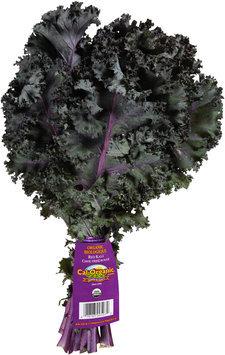 Cal-Organic® Farms Organic Red Kale Bundle
