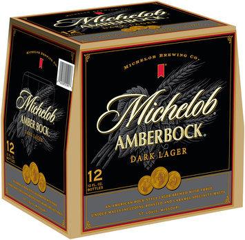Amber Bock 12 Oz Beer 12 Pk Glass Bottles