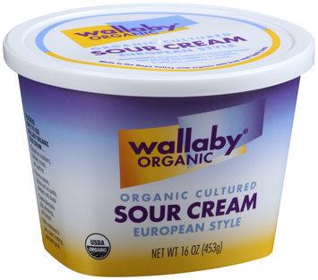 Wallaby® Organic Cultured Sour Cream 16 oz. Tub