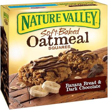 Nature Valley® Banana Bread & Dark Chocolate Soft-Baked Oatmeal Squares 6 ct Box