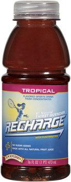 R.W. Knudsen Recharge® Tropical Sports Drink 16 oz Bottle