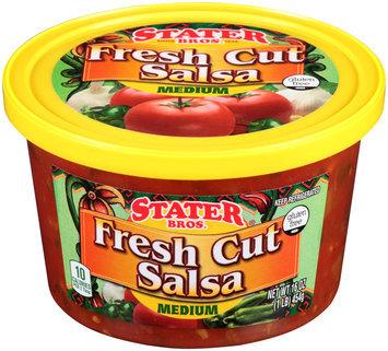 Stater Bros.® Medium Fresh Cut Salsa 16 oz. Tub