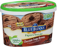 Blue Bunny® Chocolate Fudge Brownie Frozen Yogurt 1.75 qt. Tub